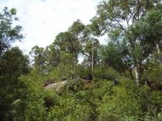 Naturpark Papuk bei Velik