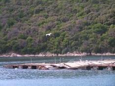 Naturparks und Nationalparks Kroatien